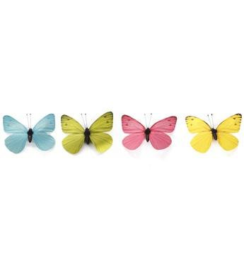 Small Spring Butterfly, Box of 8 - Treehouse Gift & Home