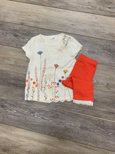 Spring Floral Top with Orange Pant