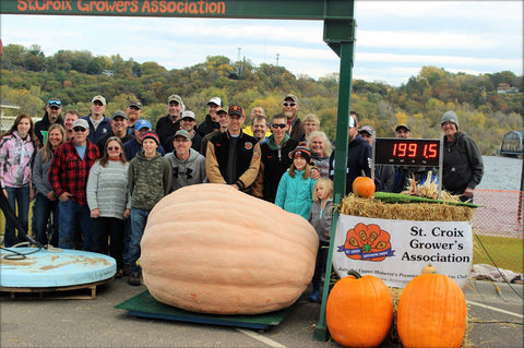 St. Croix Growers Association, giant pumpkin seeds, Stillwater HarvestFest