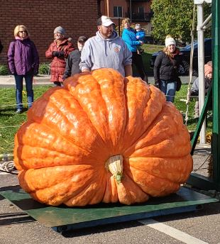 1211 Ailts giant pumpkin