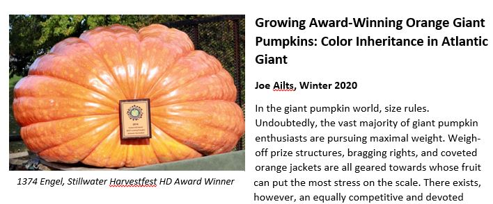 Digital Article: Growing Award-Winning Orange Giant Pumpkins