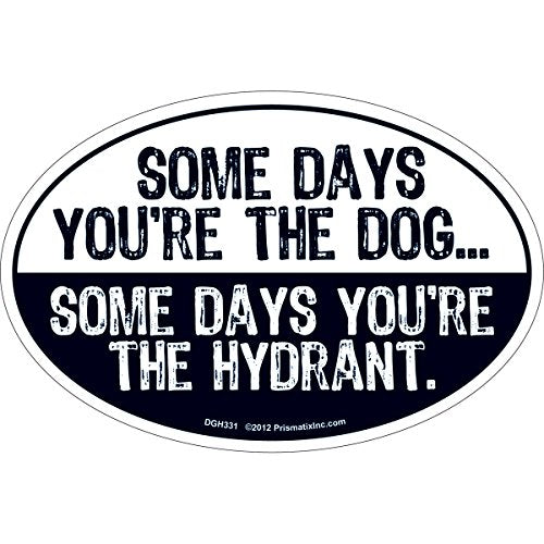 Cat And Dog Magnets-Some Days You're The Dog