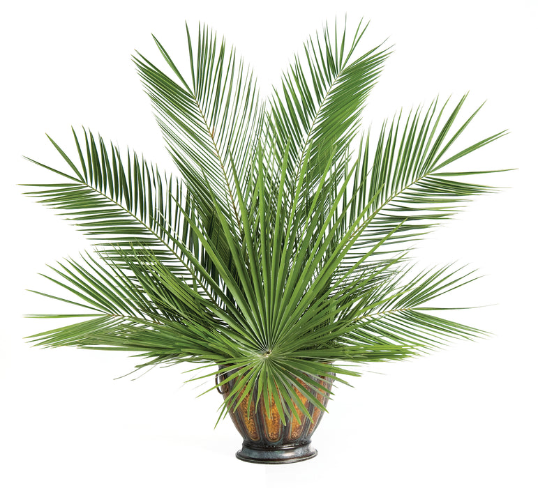 Palm Altar Décor - Fan Palm