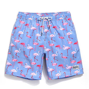 Flamingo Trunks