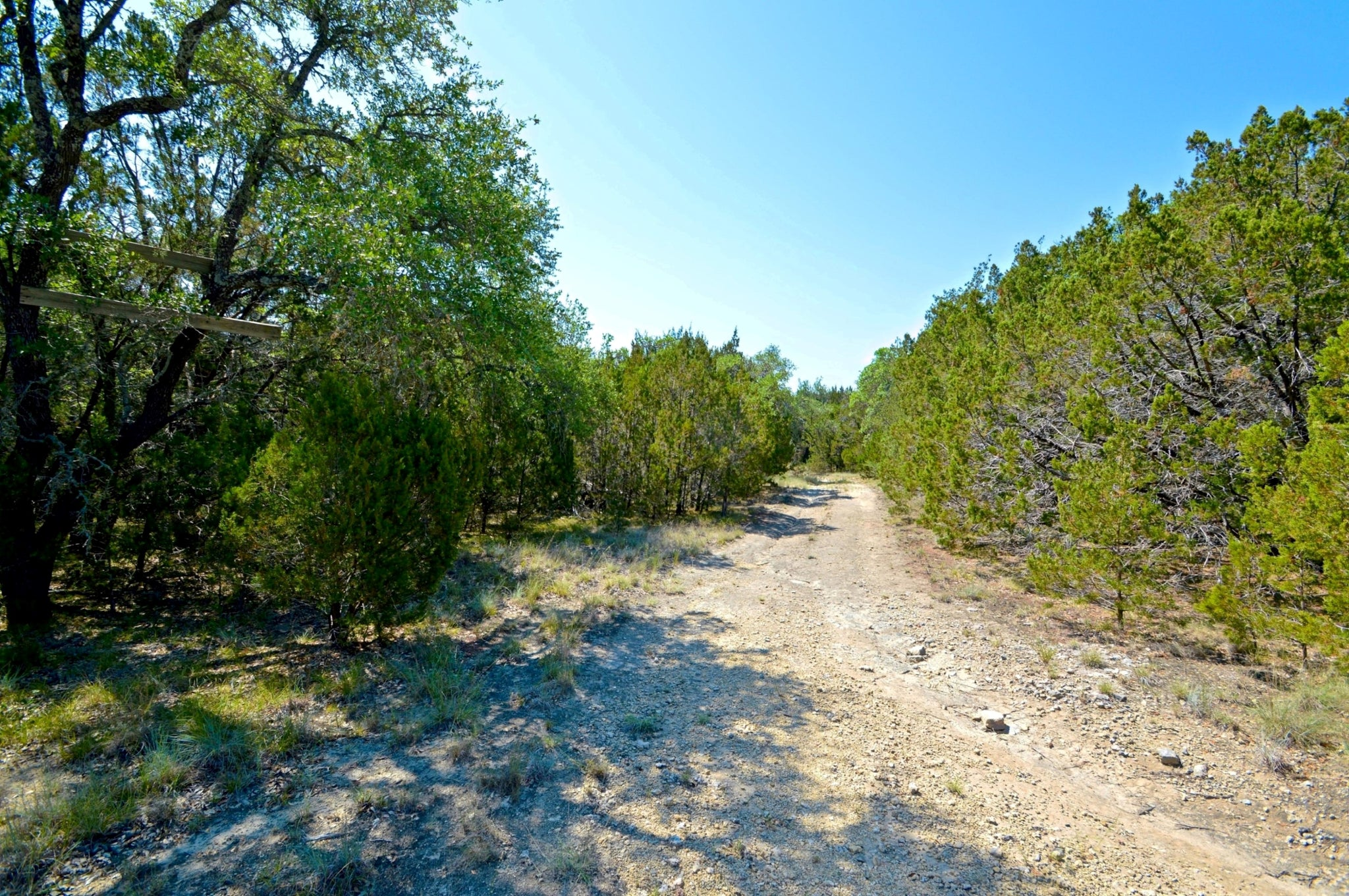 """The Hoppe Ranch""   56+/- Acres with 1 Bedroom Cabin in Mills County Texas"