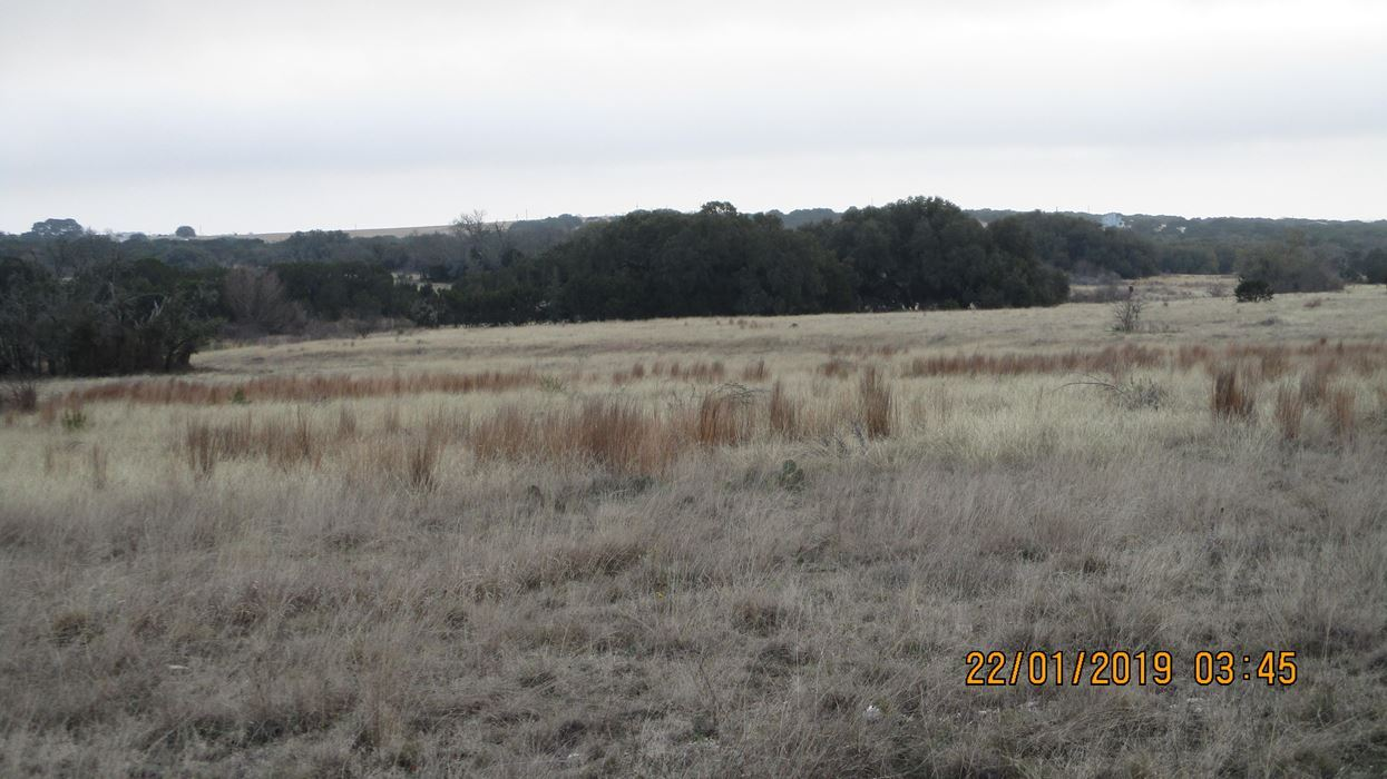 Contract Pending!  35.61+/- Acres in Mills County
