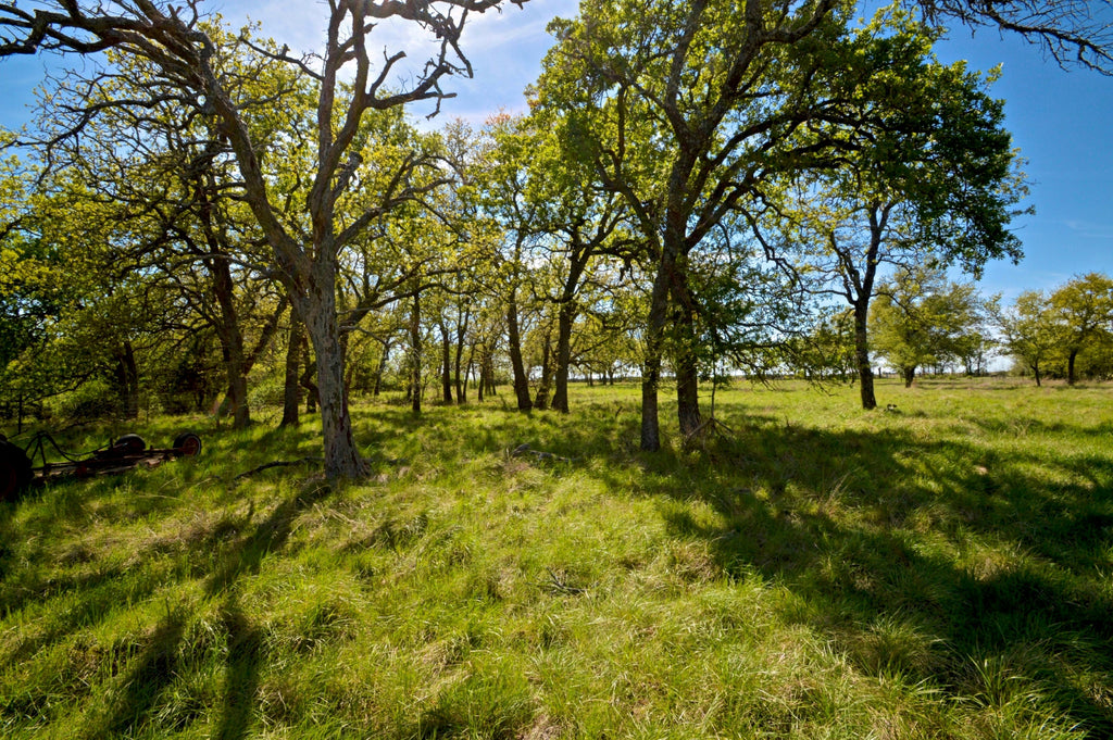 SOLD!  81+/- Acres in Lampasas County, Texas