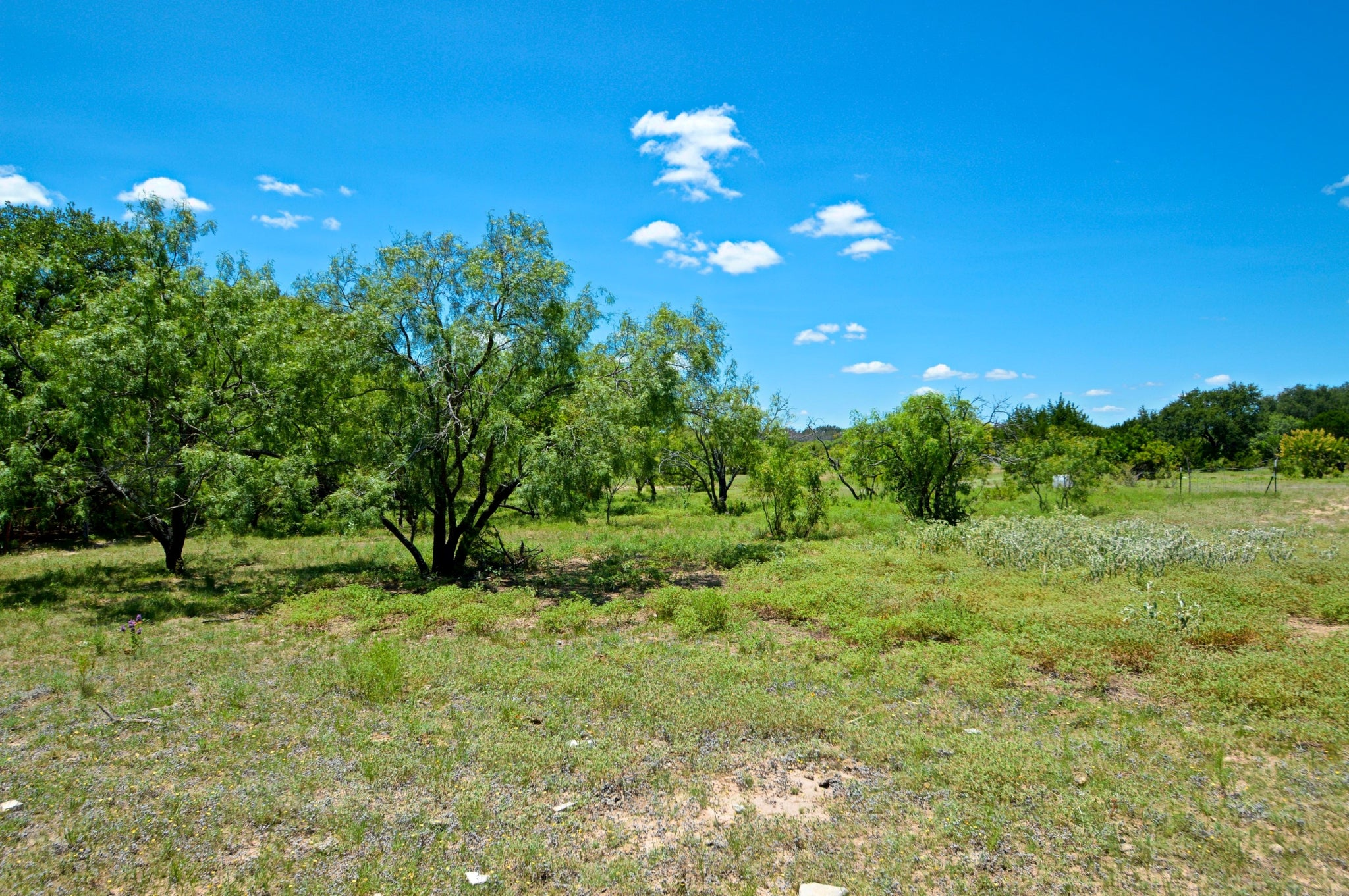 SOLD!  20+/- Acres on CR 315 in Mills County Texas