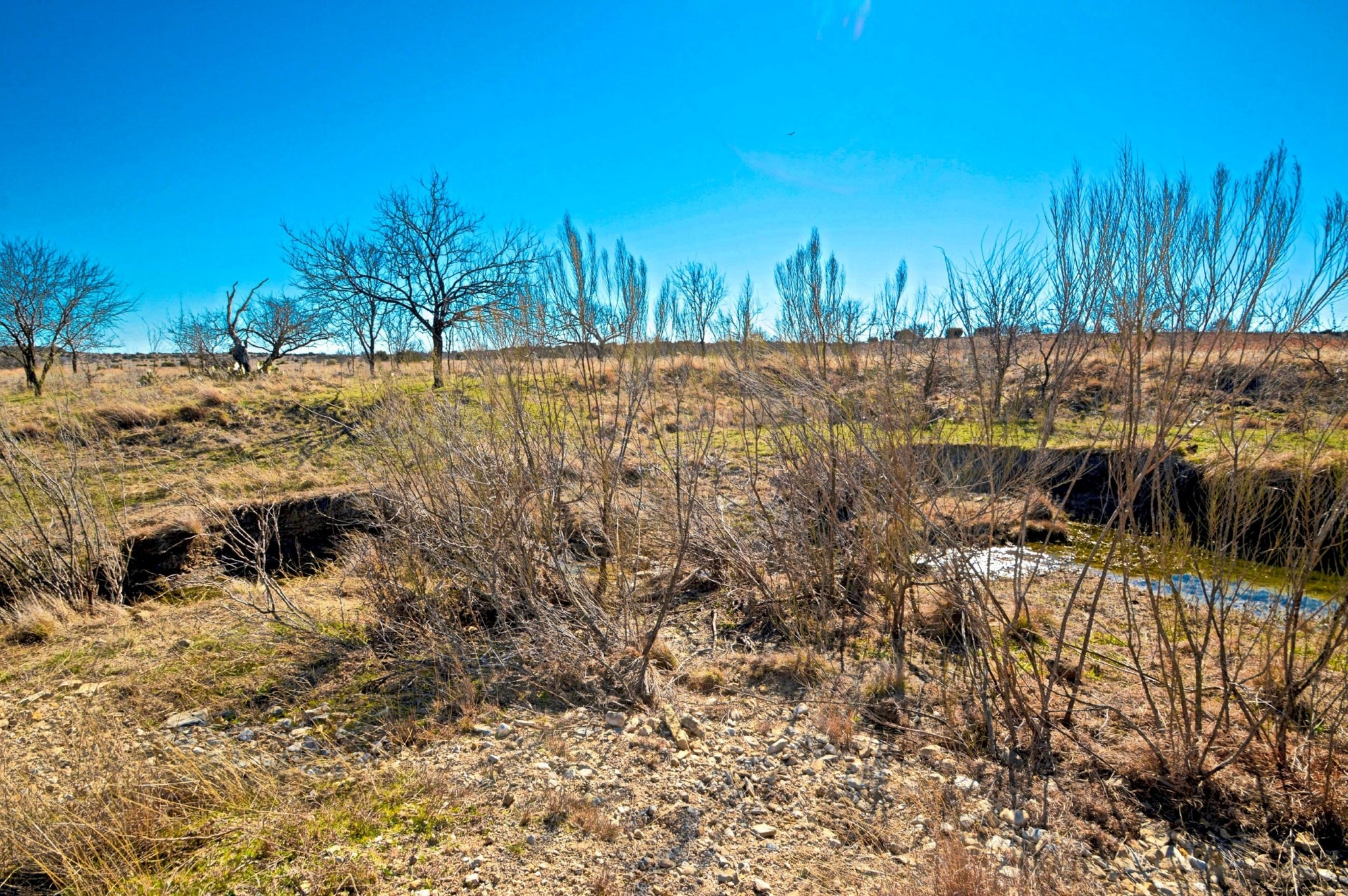 SOLD! 25+/- Acres on Patterson Creek $129,000