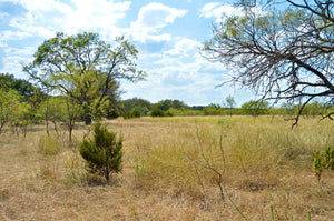 """Simms Creek Ranch"" 80+/- Acres with 4 Bedroom Home in Lampasas County Texas"