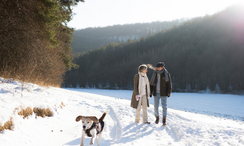 Soak in mother nature, two people walking in the snow with dog