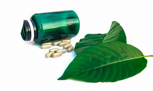 Mitragyna Speciosa: Uses, Side Effects, Interactions, Dosage, and Warning