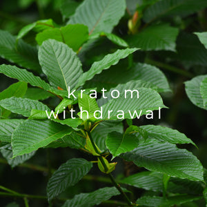 7 Kratom Withdrawal Important Facts (Timeline Included)