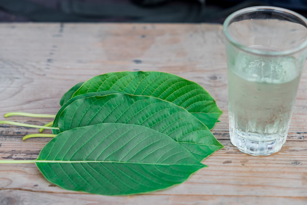 Is it Safe to Mix Kratom and Alcohol? Learn More About the Expected Effects