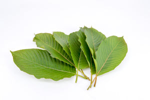 Red Vein Kratom: Everything You Need To Know About It