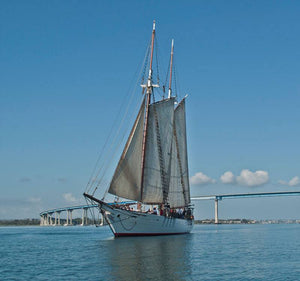Watt-a-Light Spotlight:  San Diego's historic tall ship 'Bill of Rights'