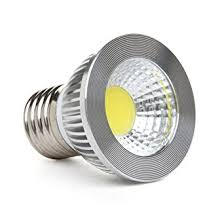 Par 30 5 Watt LED Soft Daylight E26 48V