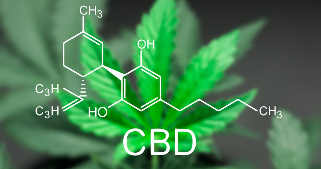 Can CBD Can Help With Your Cardiovascular Health?