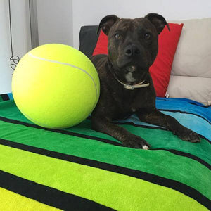 Super Giant Tennis Ball for Pets 9.5 inch