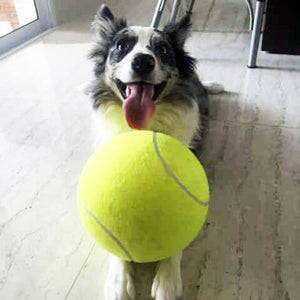 Super Giant Tennis Ball for dogs