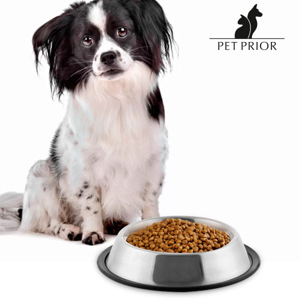 Pet Prior Dog Feeder