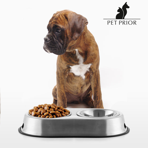 Pet Prior Pet Food & Water Bowl