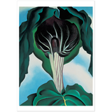 Georgia O'Keeffe Jack-in-the-Pulpit—No. 3 Notecard