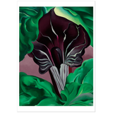 Georgia O'Keeffe Jack-in-Pulpit—No. 2 Notecard