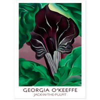 Pomegranate Georgia O'Keeffe Jack-In-The-Pulpit Boxed Notecard Gift Box