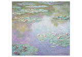 Pomegranate Monet Water Lilies Notecard Folio Daylight Card