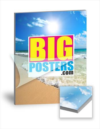 Mounted & Laminated Posters