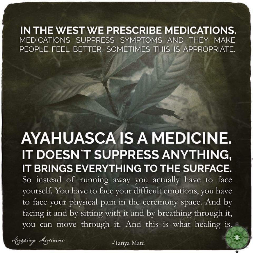 Ayahuasca: facing your fears