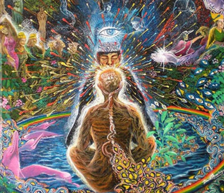 Ayahuasca,  the Divine Surgeon