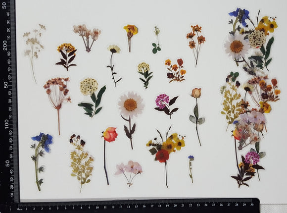 Stickers - Flowers - (SP-4216)