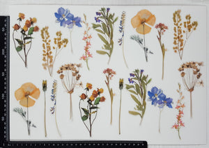 Stickers - Flowers - (SP-4224)