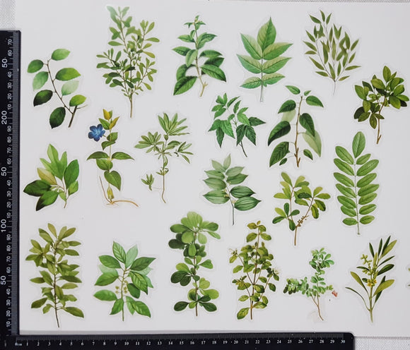 Stickers - Leaves - (SP-4257)