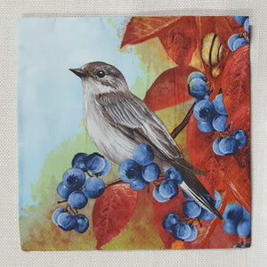 Decoupage Napkin - (DN-8014) - Bird on Blackthorn