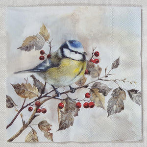 Decoupage Napkin - (DN-8086) - Sweet Little Bird