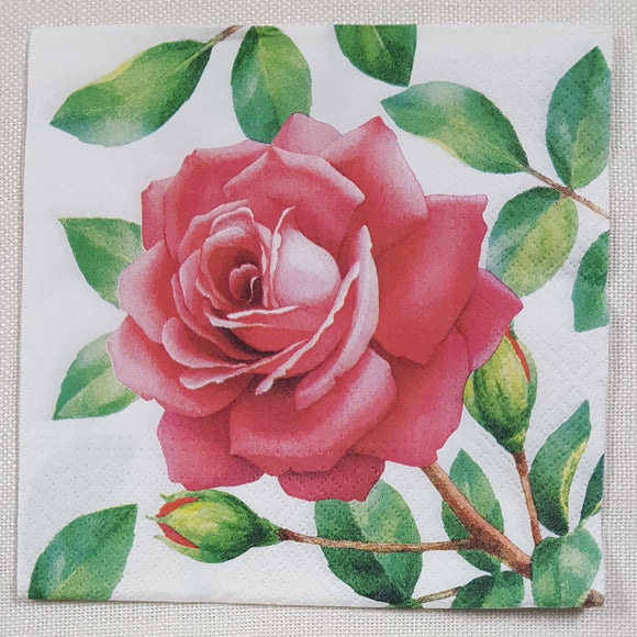 Decoupage Napkin - Special Rose - (DN-8186)