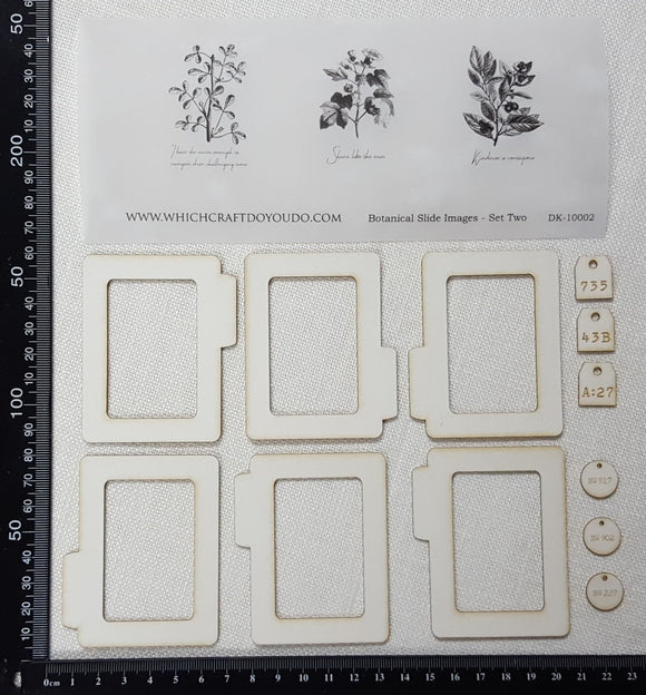 Botanical Slides Kit - Set Two