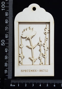 Botanical - Mini Shadow Box - B - White Chipboard