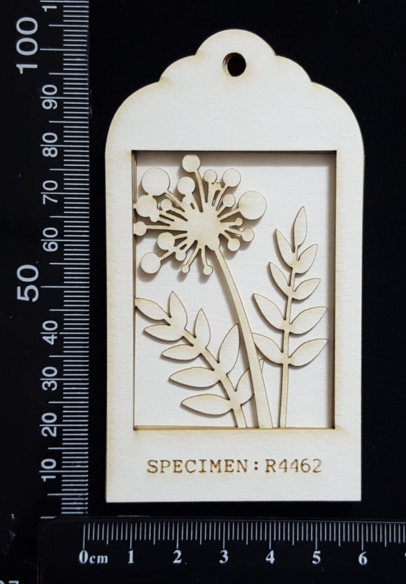 Botanical - Mini Shadow Box - D - White Chipboard