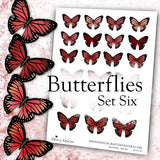 Butterflies - Set Six - DI-10125 - Digital Download