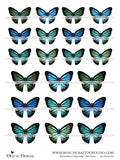 Butterflies Collection - Set Four - DI-10134 - Digital Download
