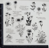 Stickers - Plants & Phrases - (SP-4164)