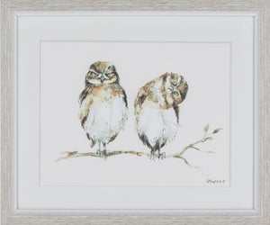 Framed Print - Hanging Out Owls - Tilly and Tiffen