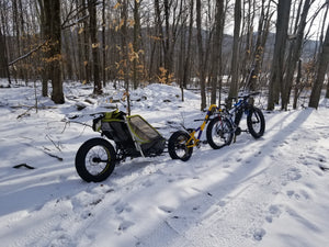 BS - 1 - Fat Tire w/ Trailer - TSDZ2