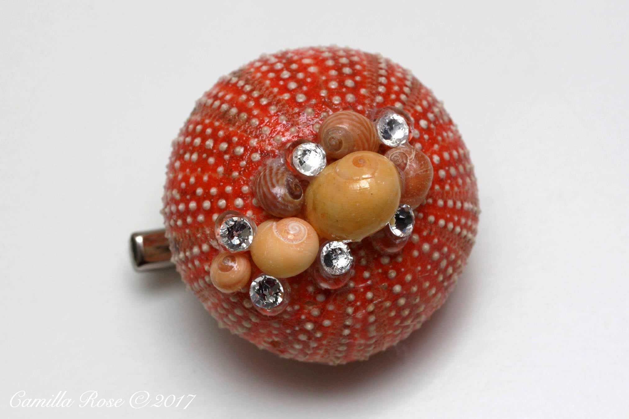 Red Urchin with Yellow Shells