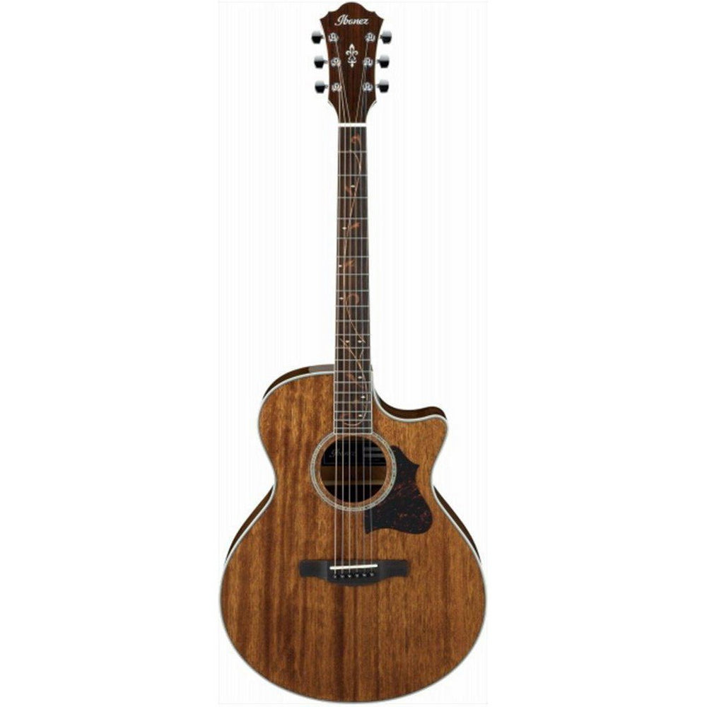 Ibanez AE245 NT Acoustic Guitar, Ibanez, Haworth Music