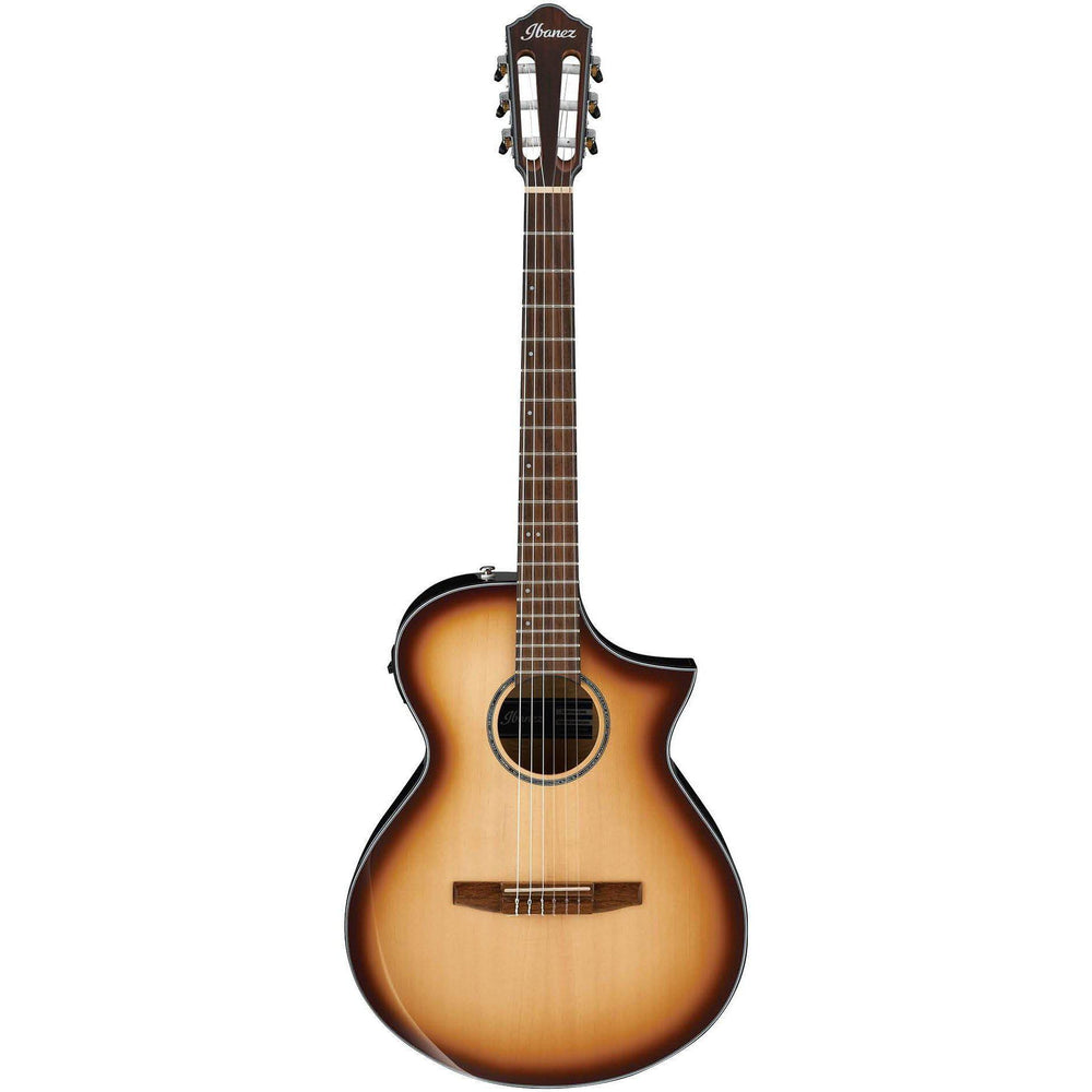 Ibanez AEWC300N NNB Acoustic Electric Guitar, Ibanez, Haworth Music